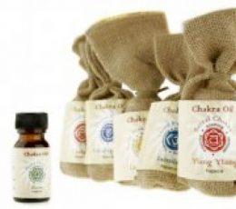 Esencias chakras:quinto chakra