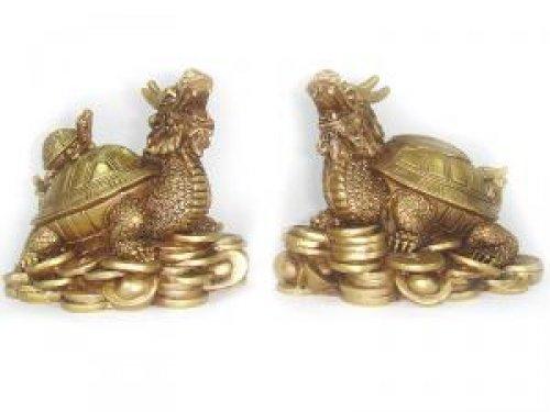 Tortuga dragón