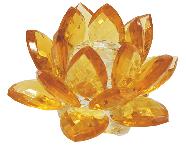 Flor de loto oro