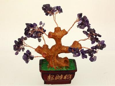 Bonsai amatista