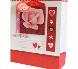 Bolsa regalo corazones