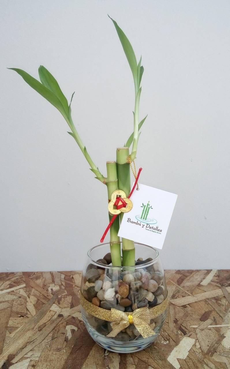 bambu-del-amor