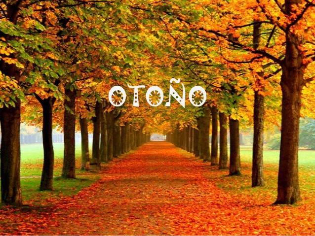 5 Consejos para celebrar el equinoccio de otoño