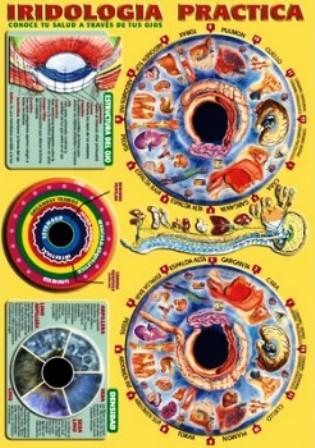 lamina-iridologia-practica