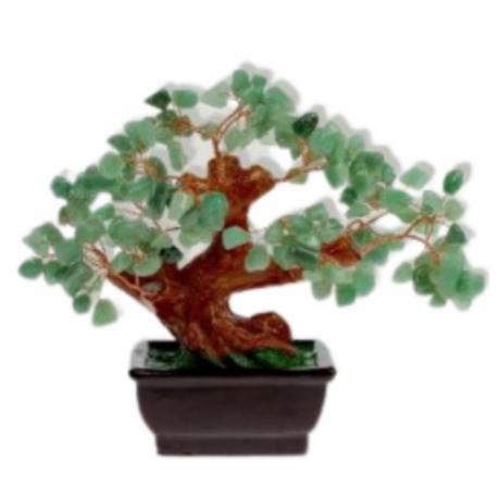 bonsai-aventurina-verde
