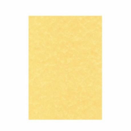 papel-de-pergamino